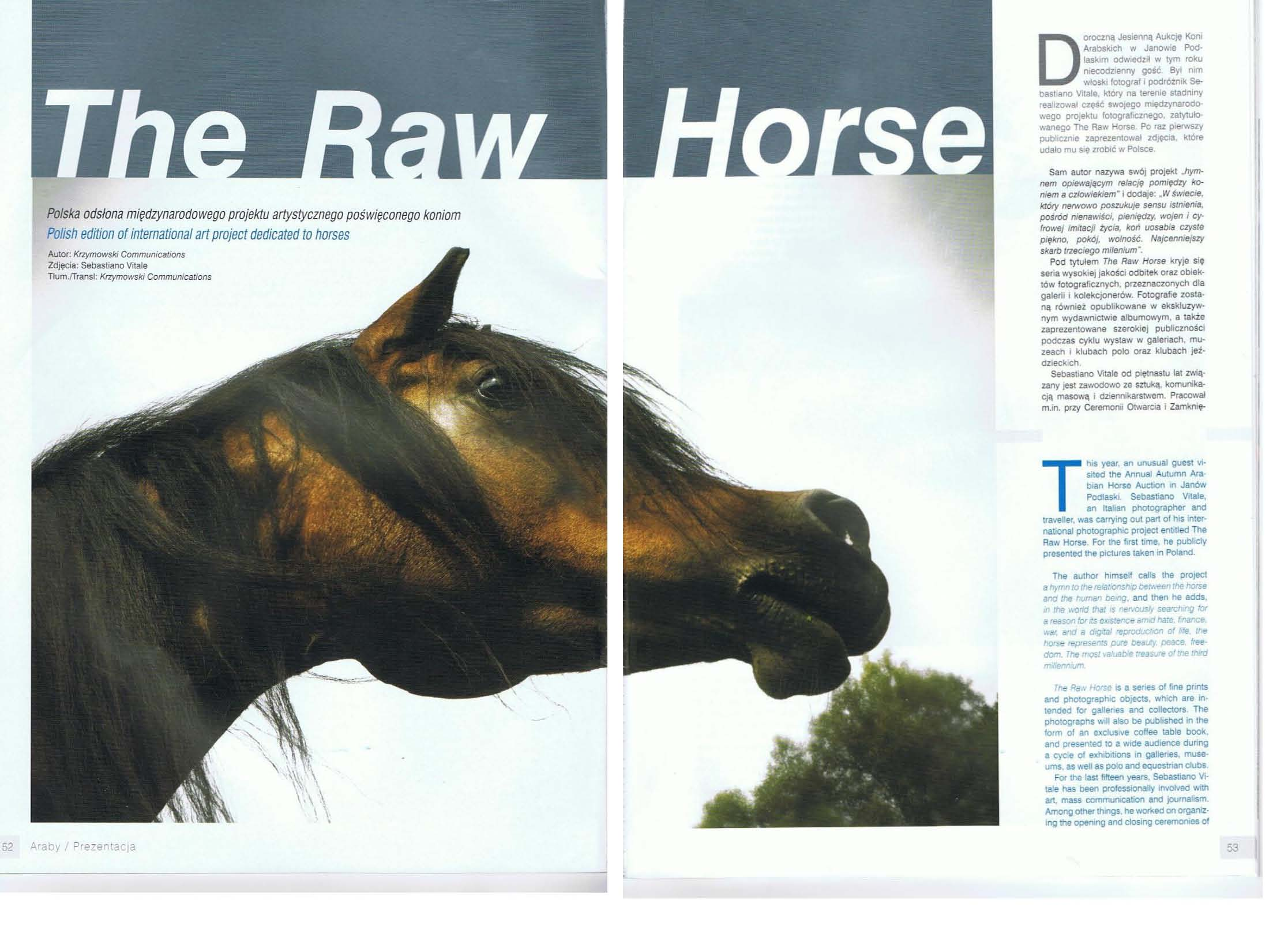 The Raw Horse