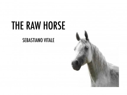 _____THERAWHORSE_catalogue