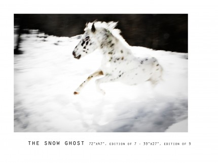 _____THERAWHORSE_catalogue10