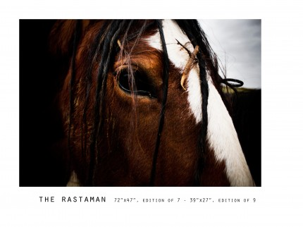 _____THERAWHORSE_catalogue48