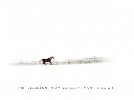 _____THERAWHORSE_catalogue7
