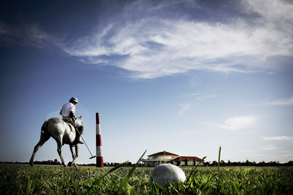 polo, a country affair